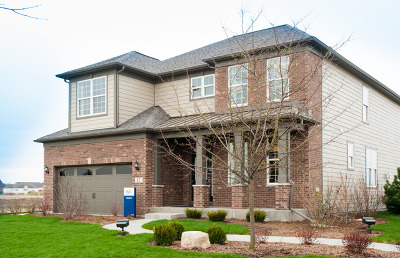 Hawthorn Woods Single Family Home For Sale: 17 Brentwood Drive