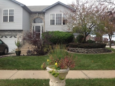 Sauk Village Single Family Home For Sale: 831 Mary Byrne Drive