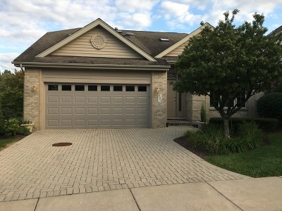 Willowbrook Single Family Home For Sale: 843 Breton Lakes Drive