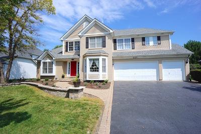 High Meadow Single Family Home For Sale: 2127 Yellowstar Lane