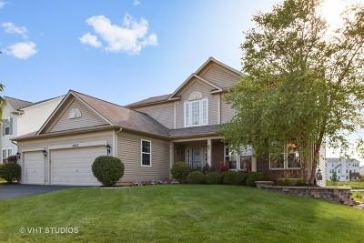 Lockport Single Family Home For Sale: 16932 Alder Drive