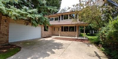 Buffalo Grove Single Family Home New: 473 Carman Avenue