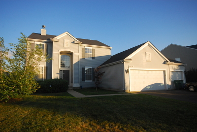Plainfield Single Family Home For Sale: 11401 Glenbrook Circle