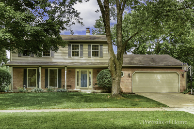 Naperville IL Single Family Home New: $497,900