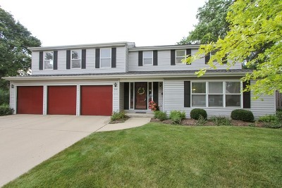 Palatine Single Family Home For Sale: 536 South Echo Lane