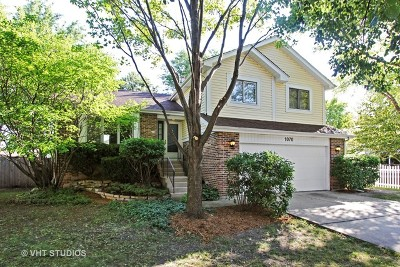 Palatine Single Family Home For Sale: 1070 East Olde Virginia Road