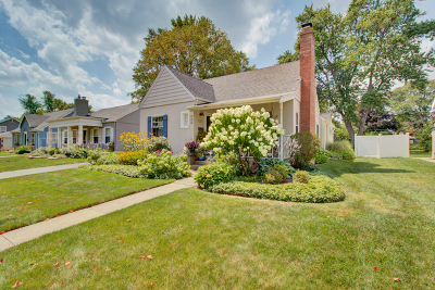 Elmhurst Single Family Home New: 438 North Elm Avenue