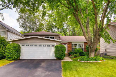 Glen Ellyn Single Family Home New: 109 Kenilworth Avenue North