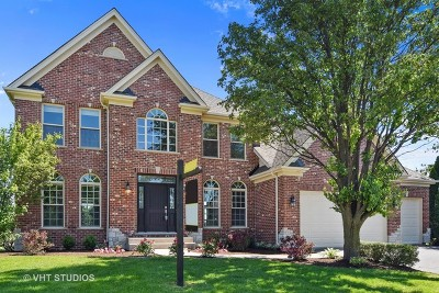 St. Charles Single Family Home For Sale: 3802 Greenwood Lane