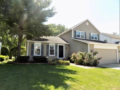 Buffalo Grove Single Family Home New: 516 Harris Drive