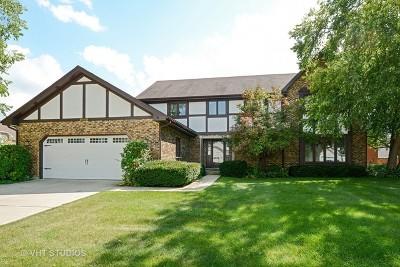 Palatine Single Family Home For Sale: 5803 Prairie Lane