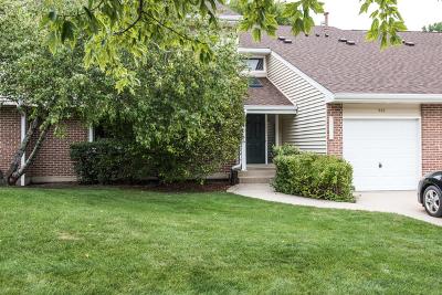 Buffalo Grove Condo/Townhouse New: 946 Hidden Lake Drive #946