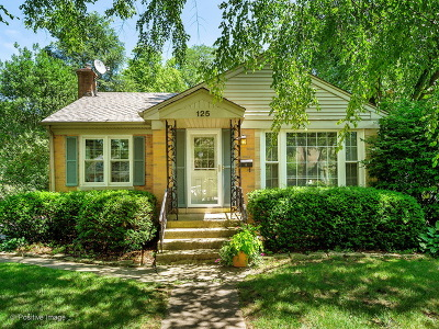 Clarendon Hills Single Family Home For Sale: 125 Iroquois Drive