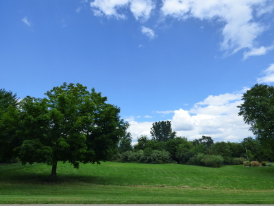 Copperfield Residential Lots & Land For Sale: 27 Copperfield Drive