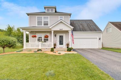Round Lake Single Family Home New: 267 West Waterbury Drive