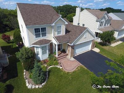 Round Lake Single Family Home New: 453 Havenwood Drive