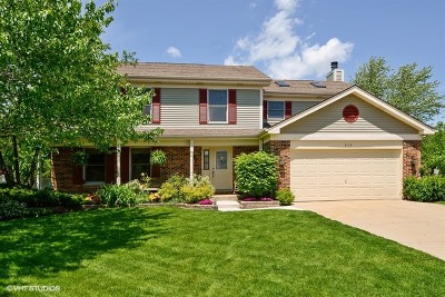 Batavia Single Family Home For Sale: 849 Newberry Drive