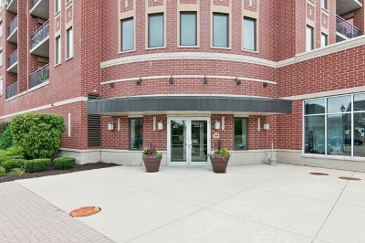 Roselle Condo/Townhouse For Sale: 225 Main Street #207