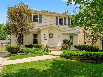 Hinsdale Single Family Home For Sale: 555 North Vine Street