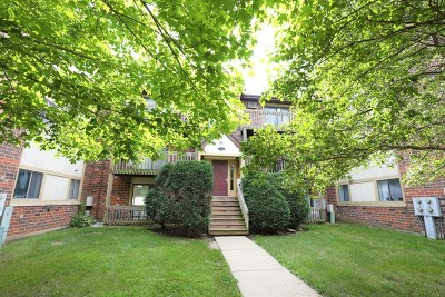 Crystal Lake IL Condo/Townhouse Contingent: $64,500