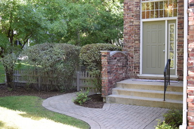 Palatine Condo/Townhouse For Sale: 120 North Drew Court