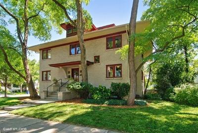 Oak Park Single Family Home New: 546 North Harvey Avenue