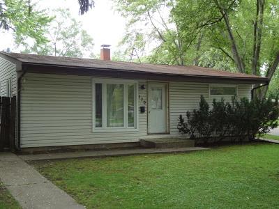 Mundelein Single Family Home New: 170 North Emerald Avenue