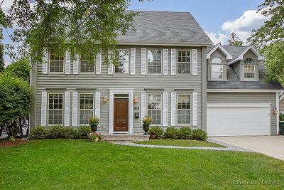 Glen Ellyn Single Family Home New: 470 Turner Avenue