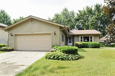 McHenry Single Family Home New: 5207 West Dartmoor Drive
