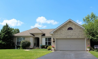 McHenry IL Single Family Home New: $289,900