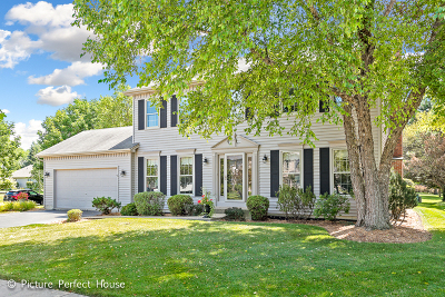 Naperville Single Family Home New: 2604 Partlow Drive