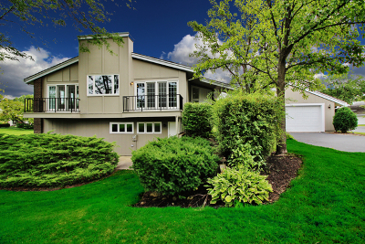 Oak Brook Single Family Home New: 132 Briarwood Avenue