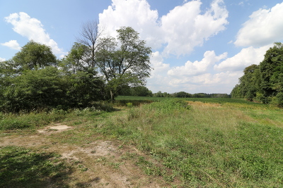 Residential Lots & Land For Sale: 15202 West 159th Street