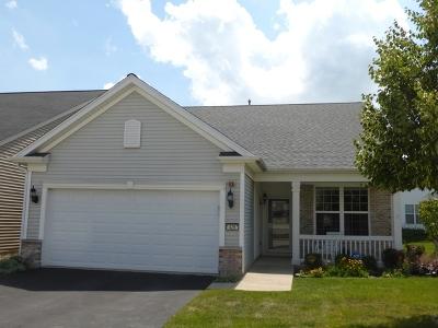 Huntley Single Family Home New: 14297 Sundance Drive