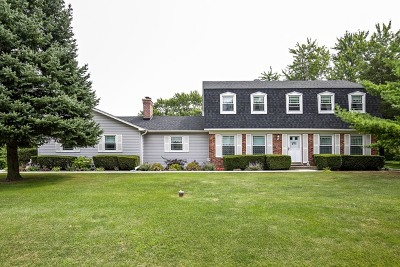 Bartlett IL Single Family Home New: $325,000