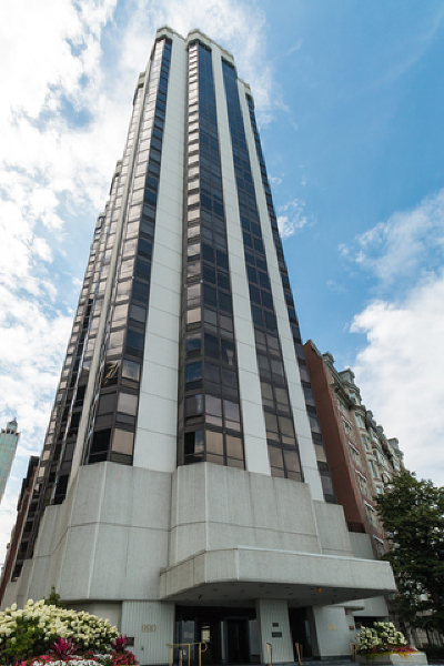 Cook County Condo/Townhouse For Sale: 990 North Lake Shore Drive #10D