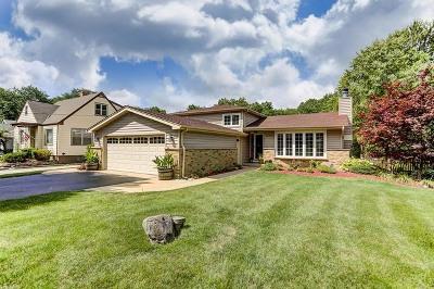 Villa Park Single Family Home Contingent: 0s476 Euclid Avenue