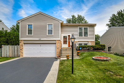 Roselle Single Family Home Contingent: 555 Radnor Drive