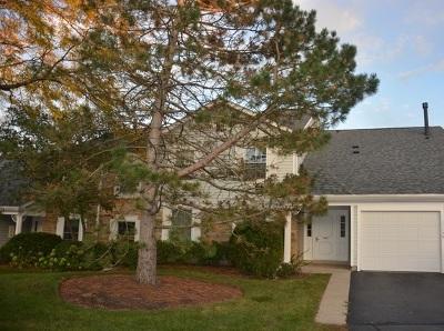 Buffalo Grove Condo/Townhouse New: 1121 Auburn Lane #1121