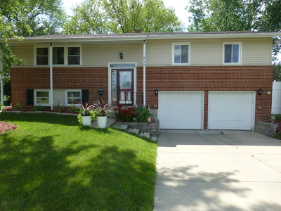 Palatine Single Family Home For Sale: 828 North Clark Drive