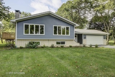 Naperville Single Family Home New: 28w153 87th Street
