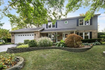 Naperville Single Family Home For Sale: 716 Muirhead Court