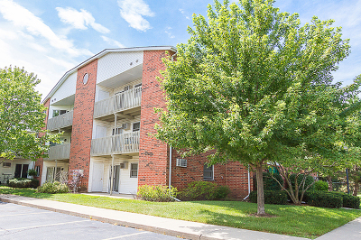 Lake In The Hills Condo/Townhouse Contingent: 1333 Cunat Court #1B