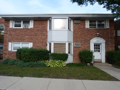 Arlington Heights Condo/Townhouse New: 514 West Miner Street #1E