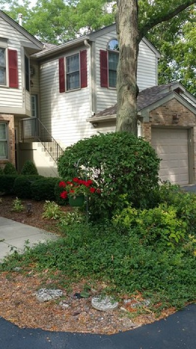Winfield Condo/Townhouse Contingent: 27w174 Emerson Court