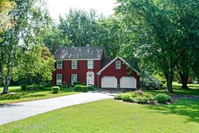 Elburn Single Family Home For Sale: 42w287 Still Meadows Lane