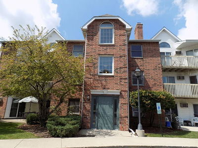 Lake In The Hills Condo/Townhouse For Sale: 1362 Cunat Court #2B