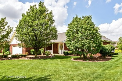 Frankfort Single Family Home Contingent: 11278 Lavender Lane