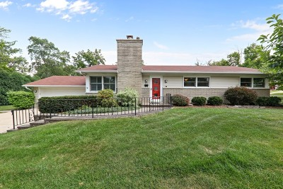 Glen Ellyn Single Family Home New: 807 Prairie Avenue