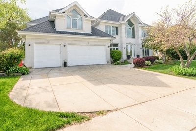 Palatine Single Family Home For Sale: 1252 North Lakeview Drive